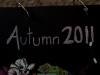 autumn-minibook-006