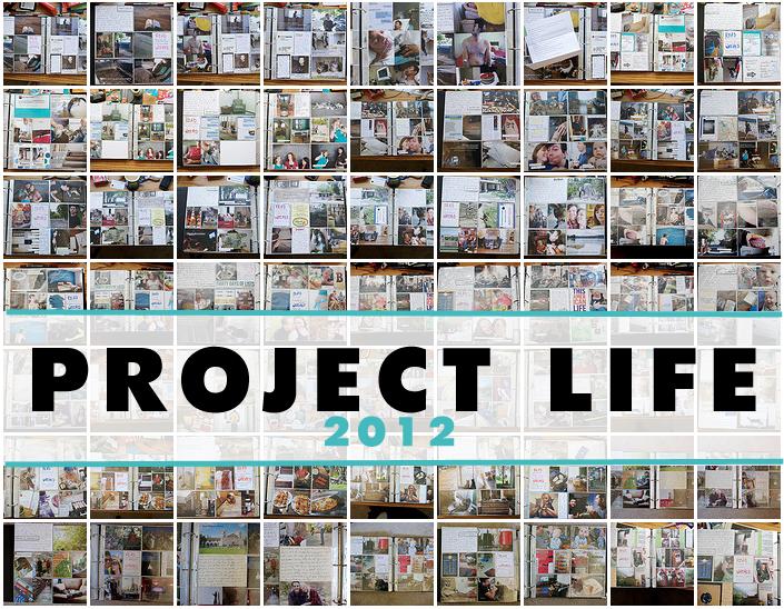 Project Life 2012 copy