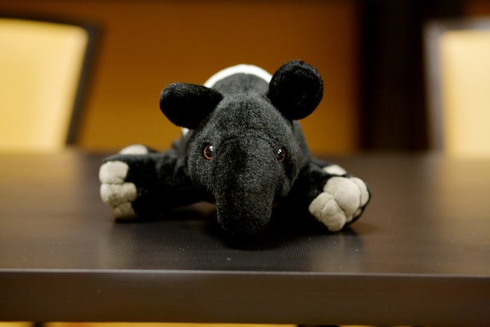 Dave the Tapir -- Sterling & Stone Colonists Summit 2015